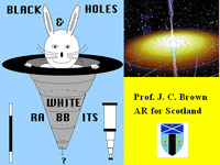 Black holes and white rabbits